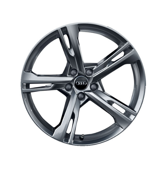 Winter-Aluminium-Gussrad im 5-Arm-Ramus-Designbrillantsilber, 8,5 J x 19
